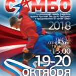 Открытый региональный турнир памяти Кавалера ордена Красной Звезды А.Бородина