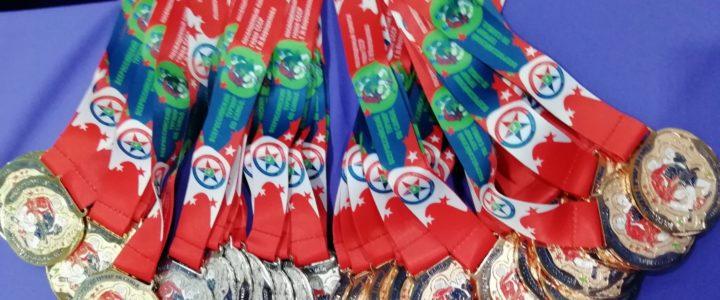Всероссийский турнир по самбо завершился в Томске