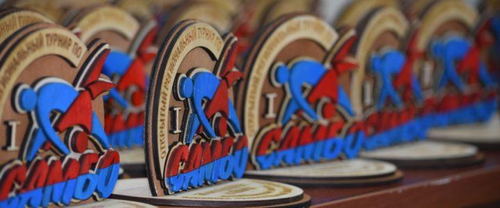 В Северске завершился региональный турнир памяти Кавалера Ордена Красной Звезды Александра Бородина