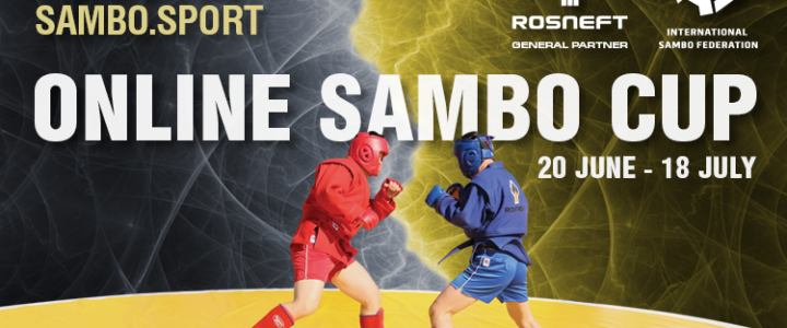 Сергиевская Виктория призер международного онлайн турнира по самбо